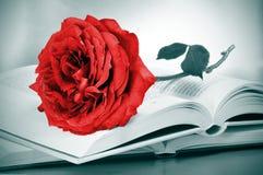 红色玫瑰和有些书 免版税库存照片