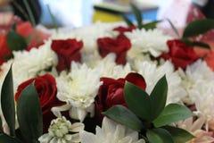 红色玫瑰和白色菊花 库存图片
