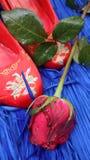 红色玫瑰和鞋子混合文化 图库摄影