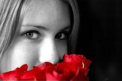 红色玫瑰嗅到 库存图片