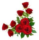 红色玫瑰开花与在壁角安排的叶子 免版税库存图片
