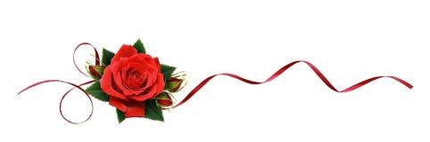 红色玫瑰开花和在线安排的丝绸丝带 图库摄影