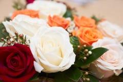 红色玫瑰空白黄色 图库摄影
