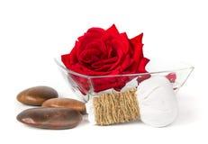 红色玫瑰肥皂草本温泉概念白色背景 图库摄影