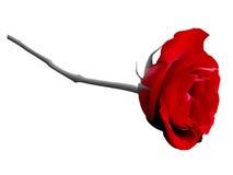 红色玫瑰色向量 图库摄影