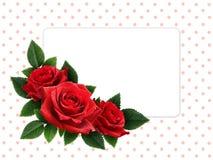 红色玫瑰花和卡片 免版税库存图片