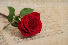 红色玫瑰花和音乐笔记板料 脏的纹理 库存图片