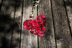 红色玫瑰花瓣塑造了在年迈的木桌上的心脏 库存图片