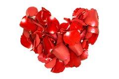 红色玫瑰花瓣心脏 图库摄影