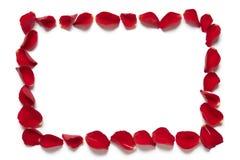 红色玫瑰花瓣正方形边界 免版税库存图片