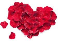 红色玫瑰花瓣的美好的心脏 免版税库存图片