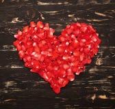 从红色玫瑰花瓣的美好的心脏 库存图片