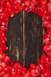 从红色玫瑰花瓣的美好的框架 免版税库存图片