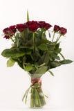 红色玫瑰花瓶 库存照片