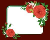 红色玫瑰装饰图案 库存照片