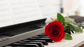 红色玫瑰钢琴锁上浪漫背景 图库摄影