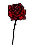 红色玫瑰风格化向量 库存例证