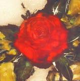 红色玫瑰,手工制造绘画 免版税库存照片