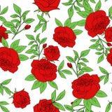 红色玫瑰,葡萄酒花传染媒介无缝的样式花束  免版税库存图片