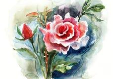 红色玫瑰,水彩例证 图库摄影