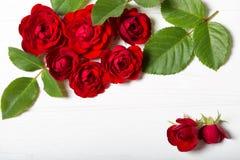 红色玫瑰 在一张白色deoevian桌上的美丽的花 库存照片