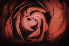 红色玫瑰水彩 库存例证