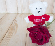 红色玫瑰19 库存图片