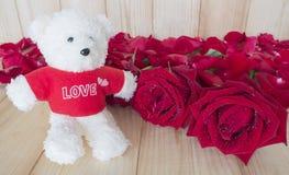 红色玫瑰35 库存图片