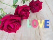 红色玫瑰37 免版税图库摄影