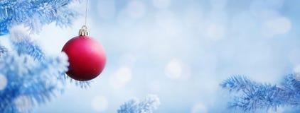 红色球圣诞节背景在雪蓝色树的 库存图片