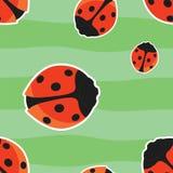 红色瓢虫无缝的模式 库存图片