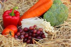 红色甜椒、蔬菜和水果 免版税库存照片