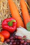 红色甜椒、蔬菜和水果 免版税库存图片