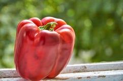 红色甜椒关闭在被弄脏的五颜六色的绿色背景的木白色桌上与拷贝空间 库存图片