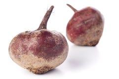 红色甜菜 免版税图库摄影