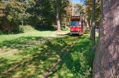 红色电车在海牙 免版税库存图片