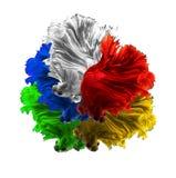 红色白色绿色黄色和蓝色颜色龙暹罗战斗的fi 免版税图库摄影