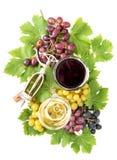红色白葡萄酒玻璃葡萄树绿色留下秋天 图库摄影