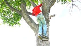 红色的人上升下来树 股票录像