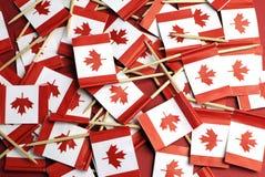红色的加拿大和水平白色枫叶全国牙签的旗子-。 库存图片