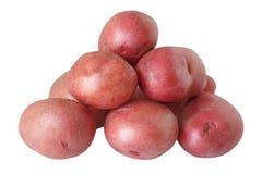 红色的土豆 免版税库存图片