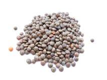 红色的扁豆 免版税库存照片