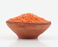 红色的扁豆 库存照片