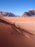 红色的沙丘 库存图片