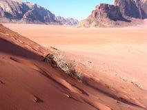 红色的沙丘 图库摄影