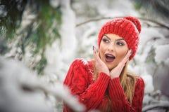 红色的美丽的妇女与棕色毛皮海角享受在森林白肤金发的女孩的冬天风景摆在积雪的分支下 图库摄影