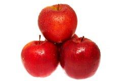 红色的苹果弄湿了 免版税库存图片