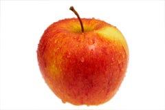 红色的苹果弄湿了 库存图片