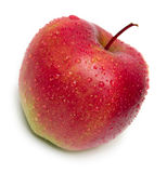 红色的苹果弄湿了 库存照片