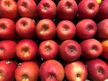 红色的苹果 果子abd菜 库存照片
